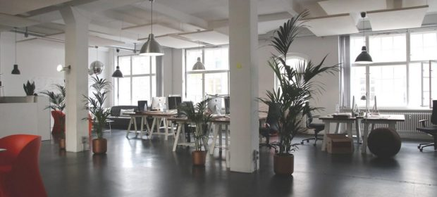 Eco-Friendly Workplace